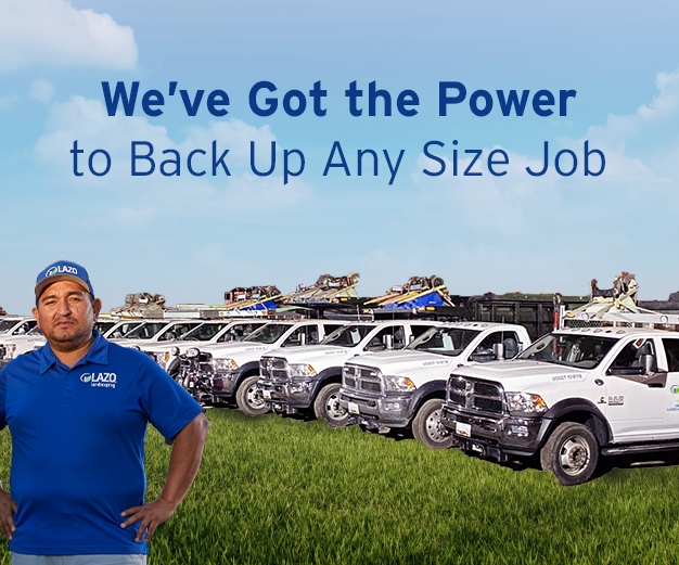 We've got the power to back up any size job
